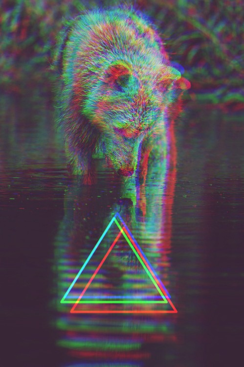hipster wolf triangle trippy tumblr wallpapers 3d iphone triangles infamous animal sussle backgrounds background triangulo filter hippie wallpapersafari told geometric