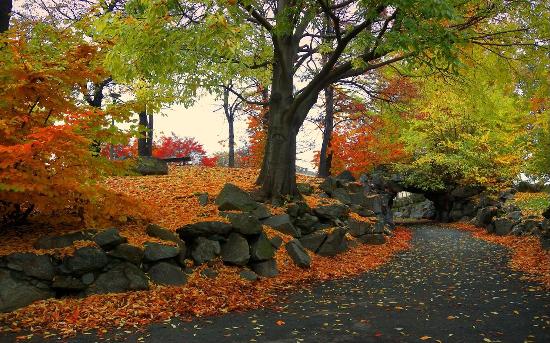Desktop HD Autumn Wallpapers HDIMAGESPLUS 1440x900