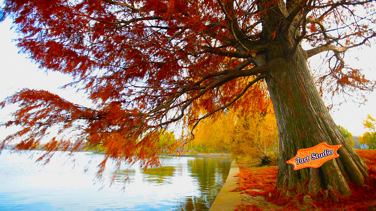 ... wallpaper for windows get animated live wallpaper for android autumn