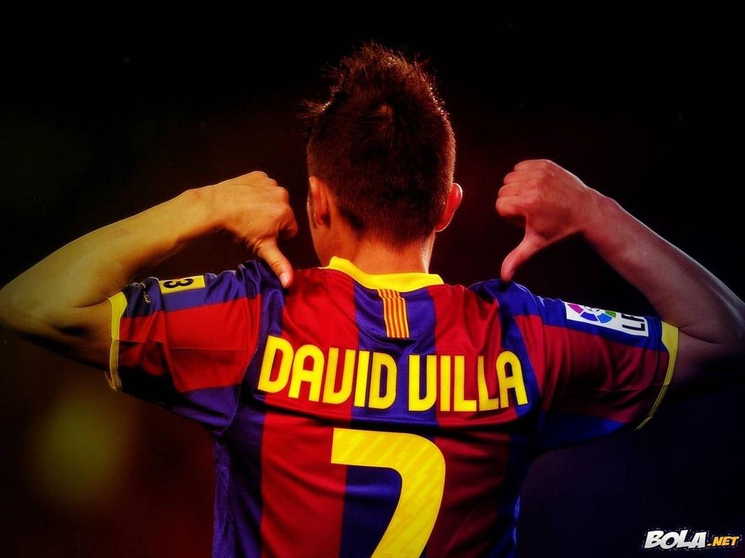 David Villa FC Barcelona Wallpaper   David Villa Fan Art 1067x800