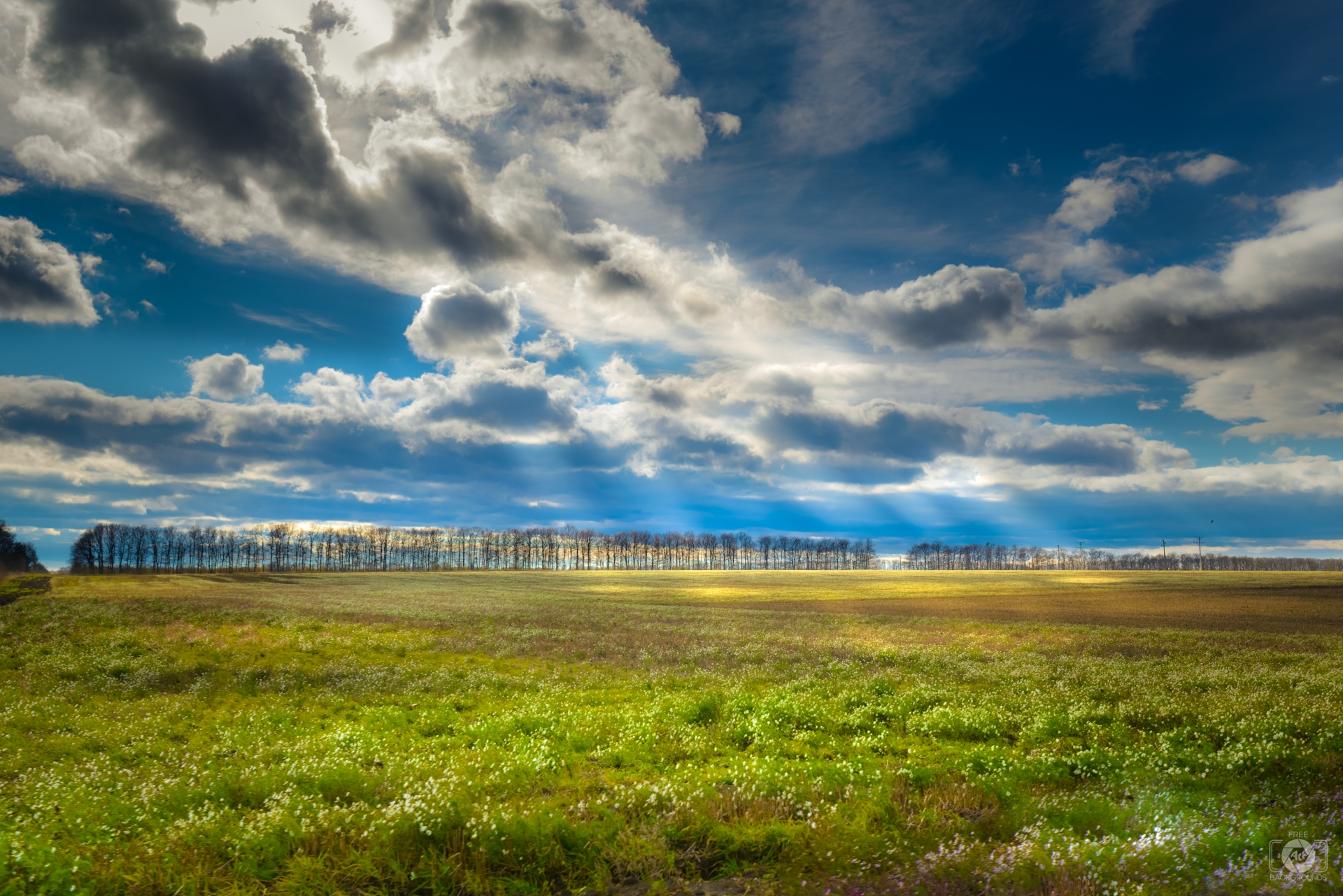 Field Landscape Background   High quality Backgrounds 1920x1281