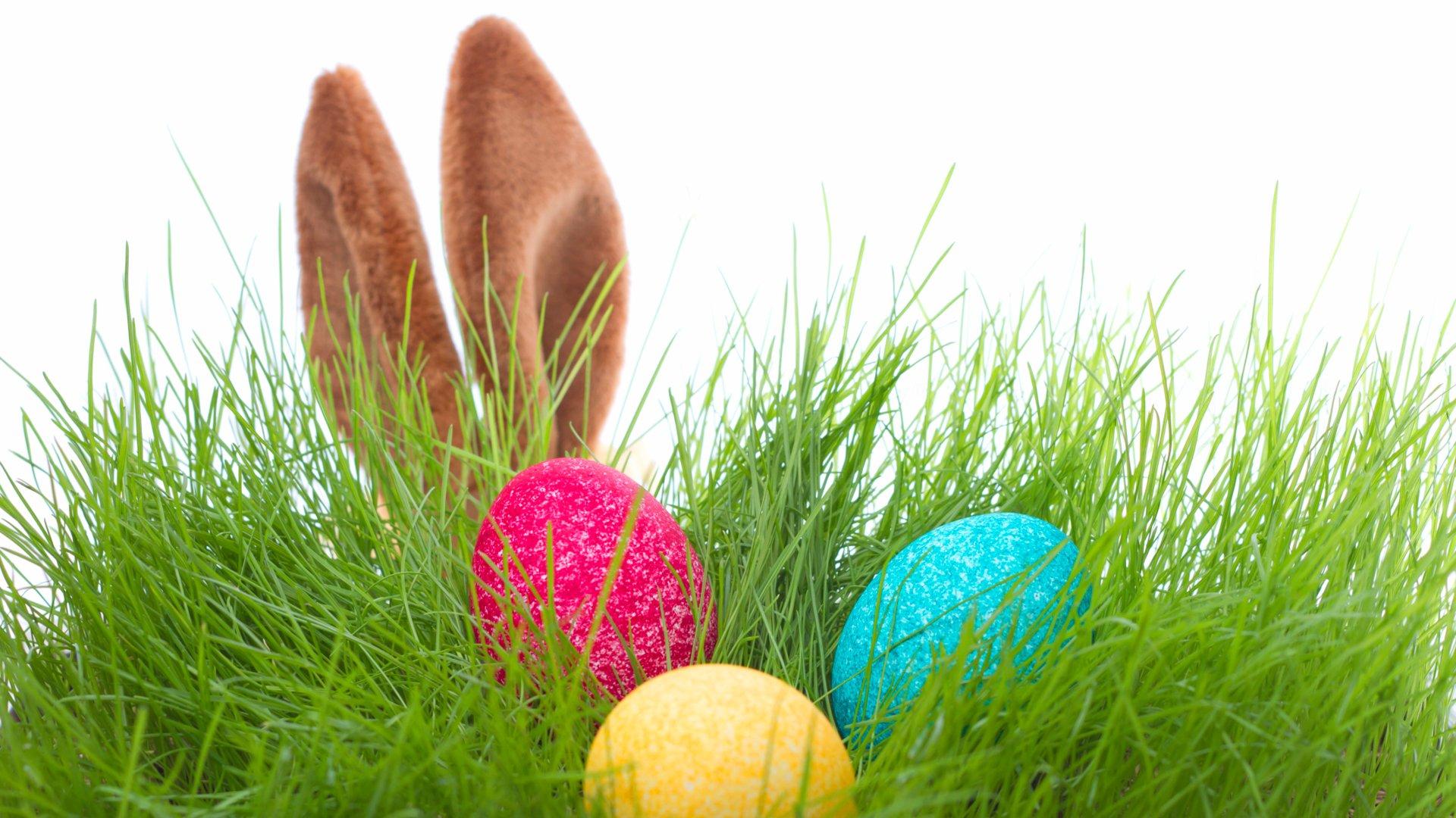 Easter Egg Hunt   Bryce Resort 1920x1080