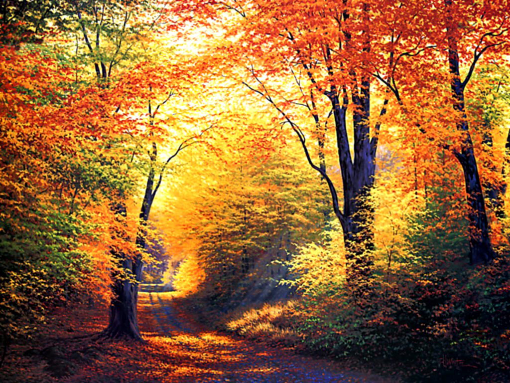 Autumn Wallpapers HD Autumn Wallpapers HD 1024x768