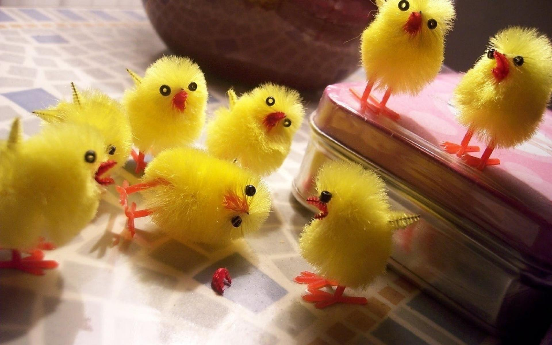 chicks birds cute toys chickens easter humor wallpaper 1920x1200 1920x1200
