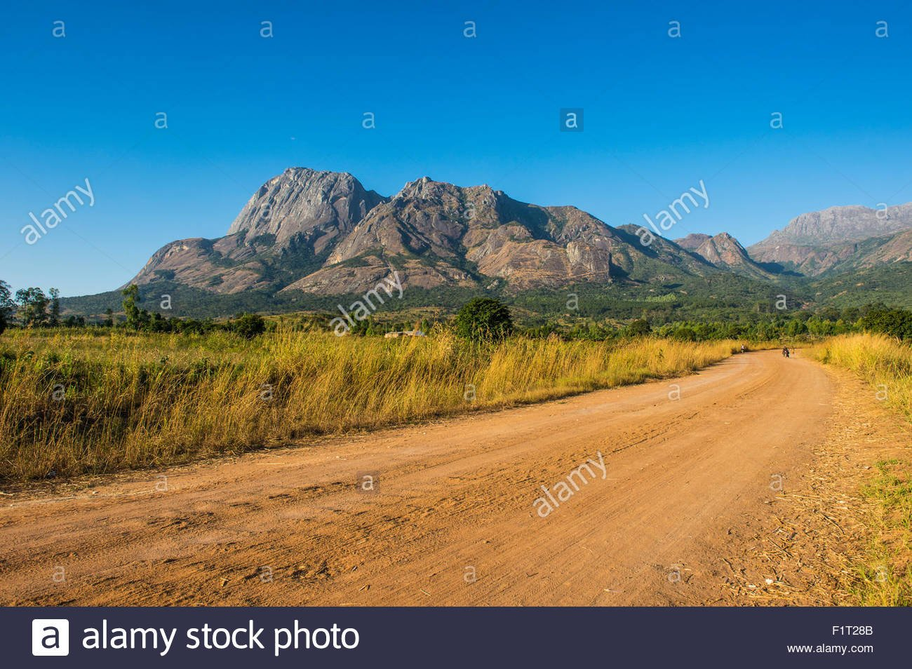 Mulanje Mountain Stock Photos Mulanje Mountain Stock Images   Alamy 1300x954