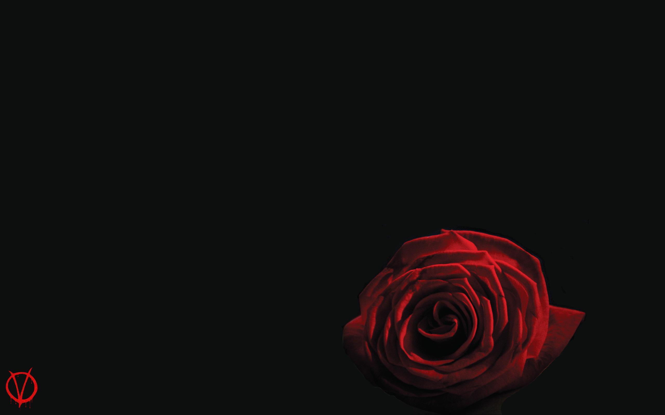 for Vendetta HD desktop wallpaper V for Vendetta wallpapers 2560x1600