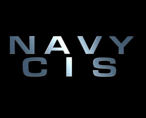 NCIS Logo by andtis 500x404