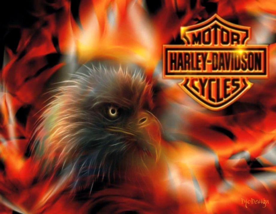 Harley Davidson Wallpaper Wallpapers