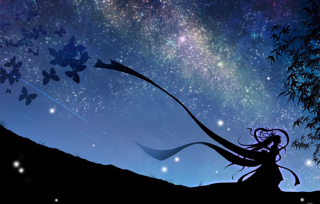 Wallpaper the sky girl stars butterfly night art vocaloid 1332x850
