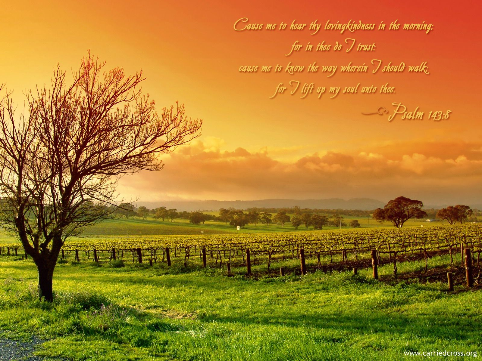 Psalm 1438 Wallpaper   Christian Wallpapers and Backgrounds 1600x1200