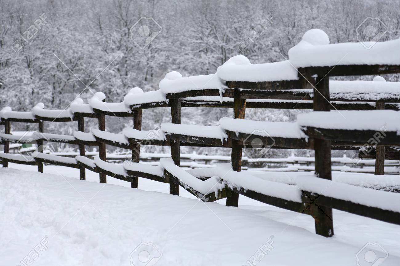 Extreme Closeup Of Snowy Corral Fence Wintertime As A Background 1300x866