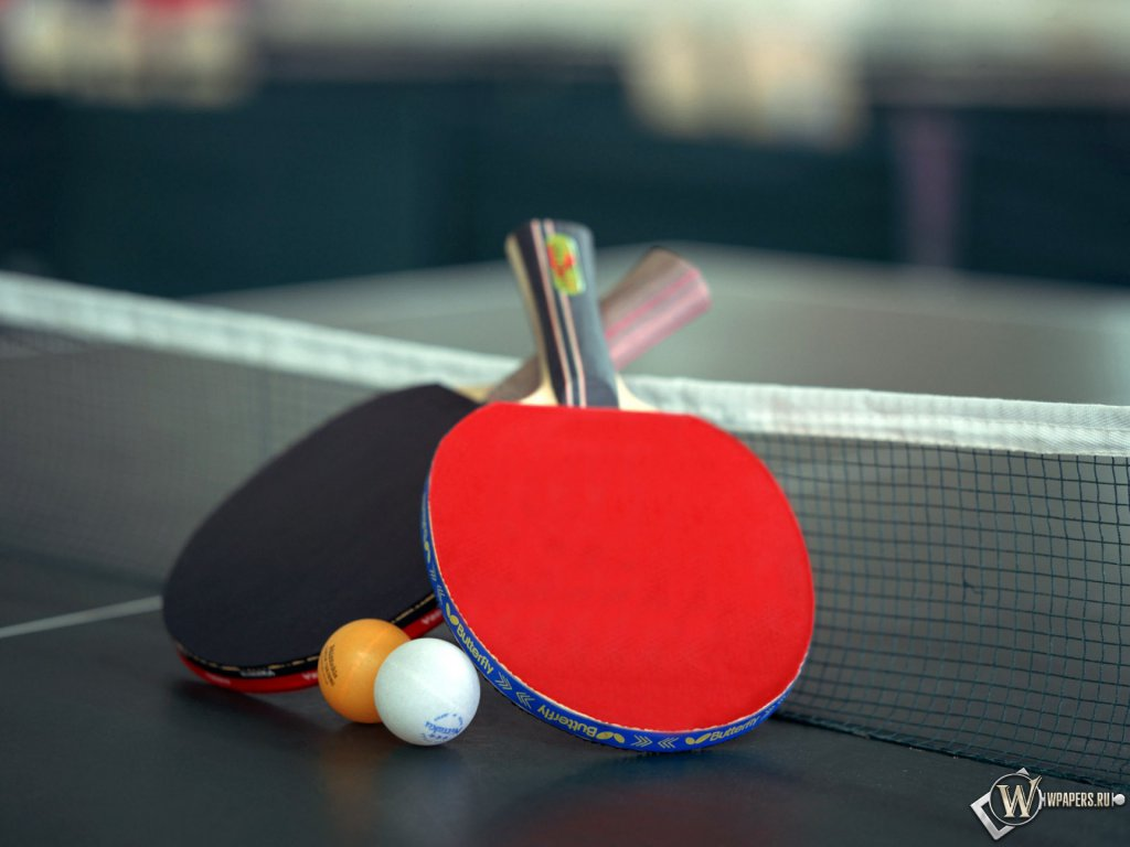 Table Tennis wallpapers pictures and photos for 1024x768