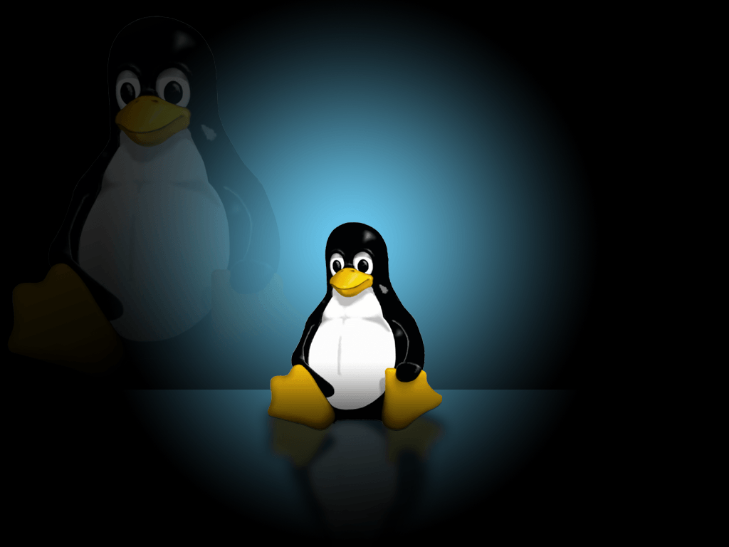 Linux Desktop Wallpapers 1024x768