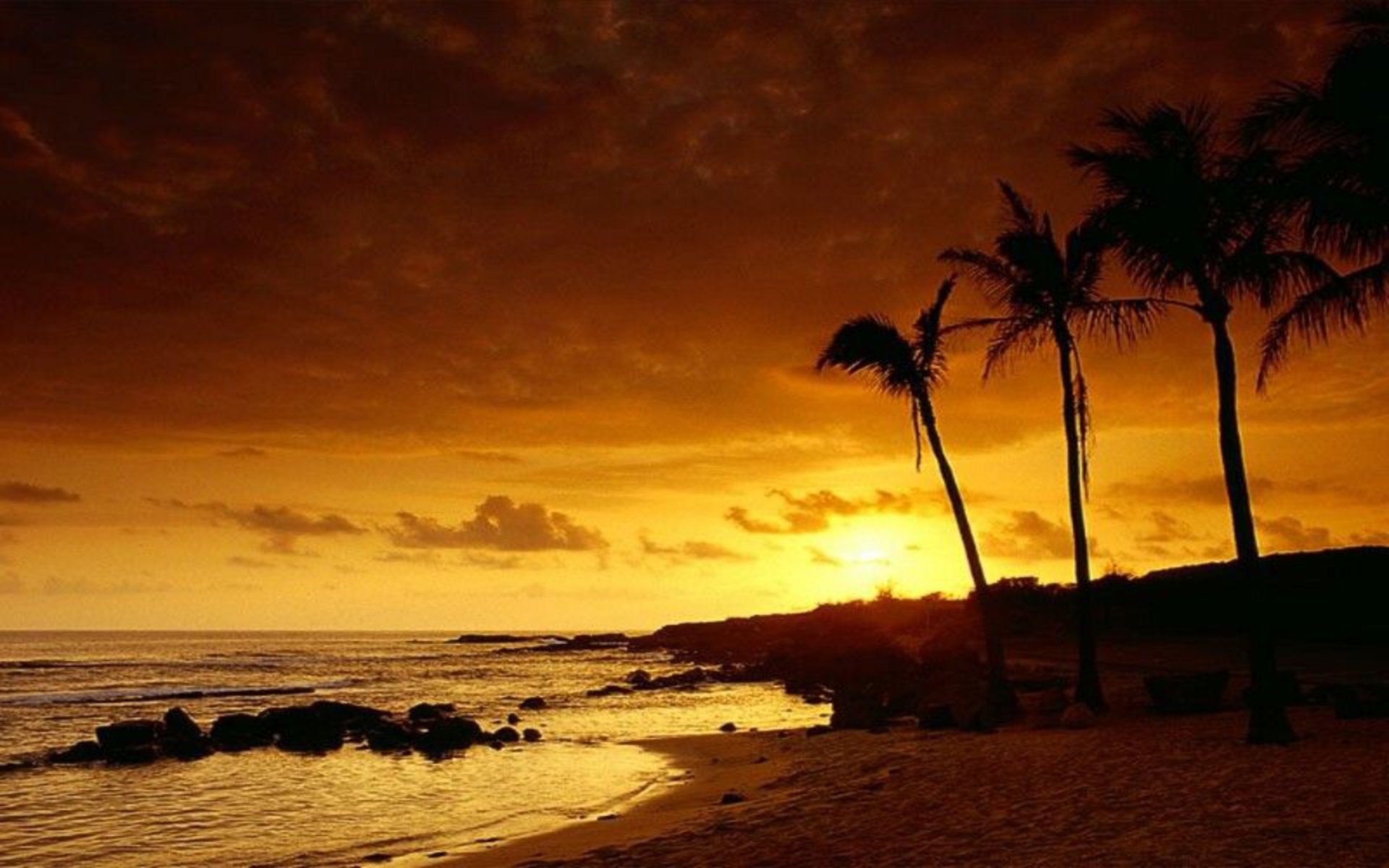 tropical sunset backgrounds - photo #25