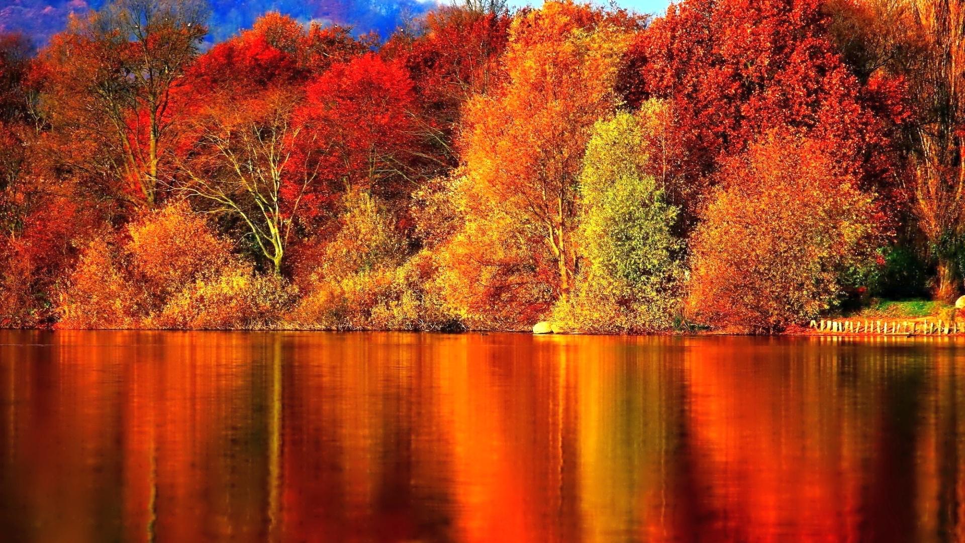 Autumn Wallpaper HD 1673784 1920x1080