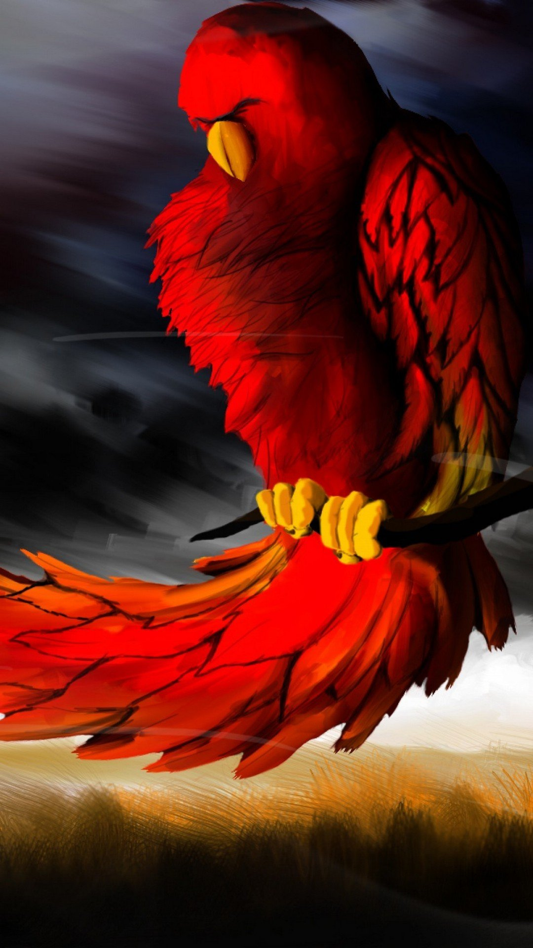 Android Wallpaper Phoenix Bird Images   2019 Android Wallpapers 1080x1920