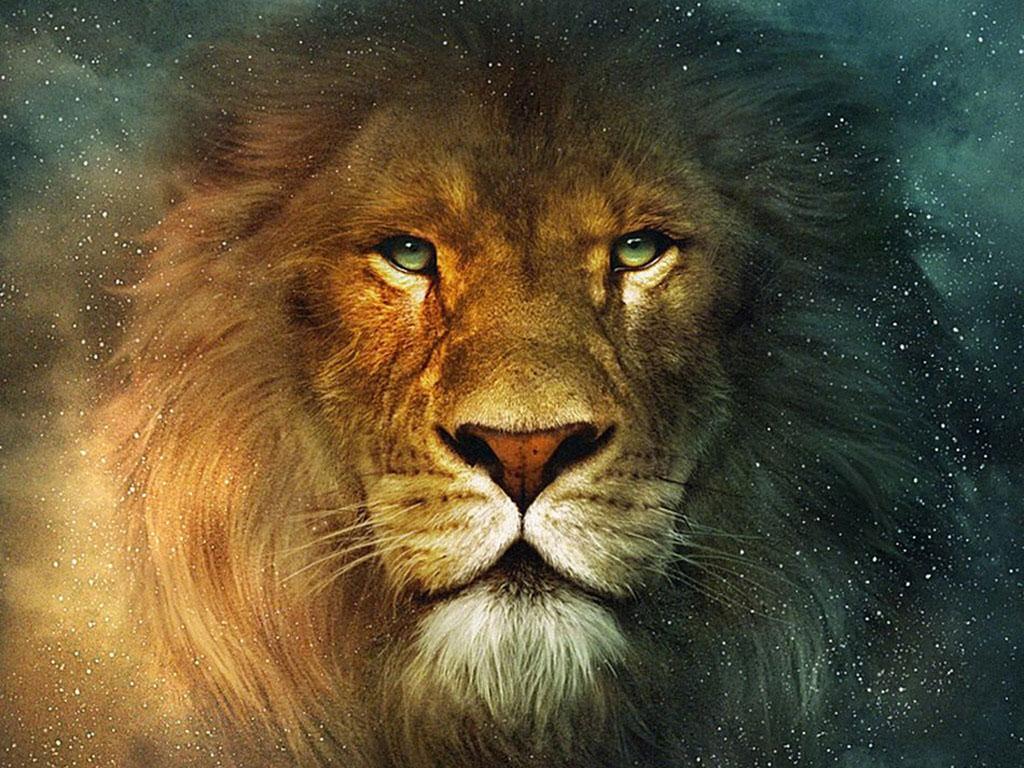 Lion profile roar