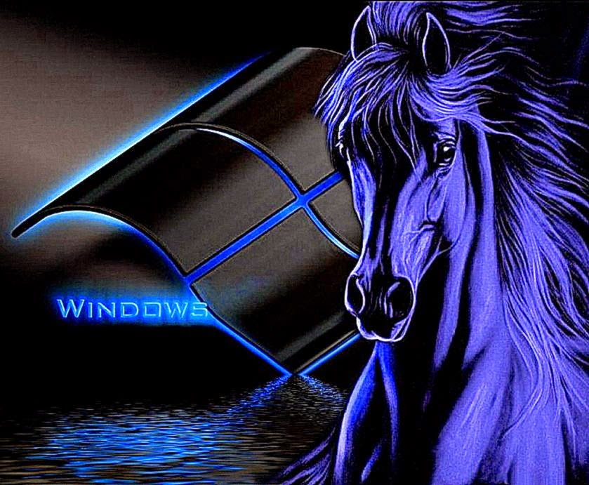 free horse wallpaper for android