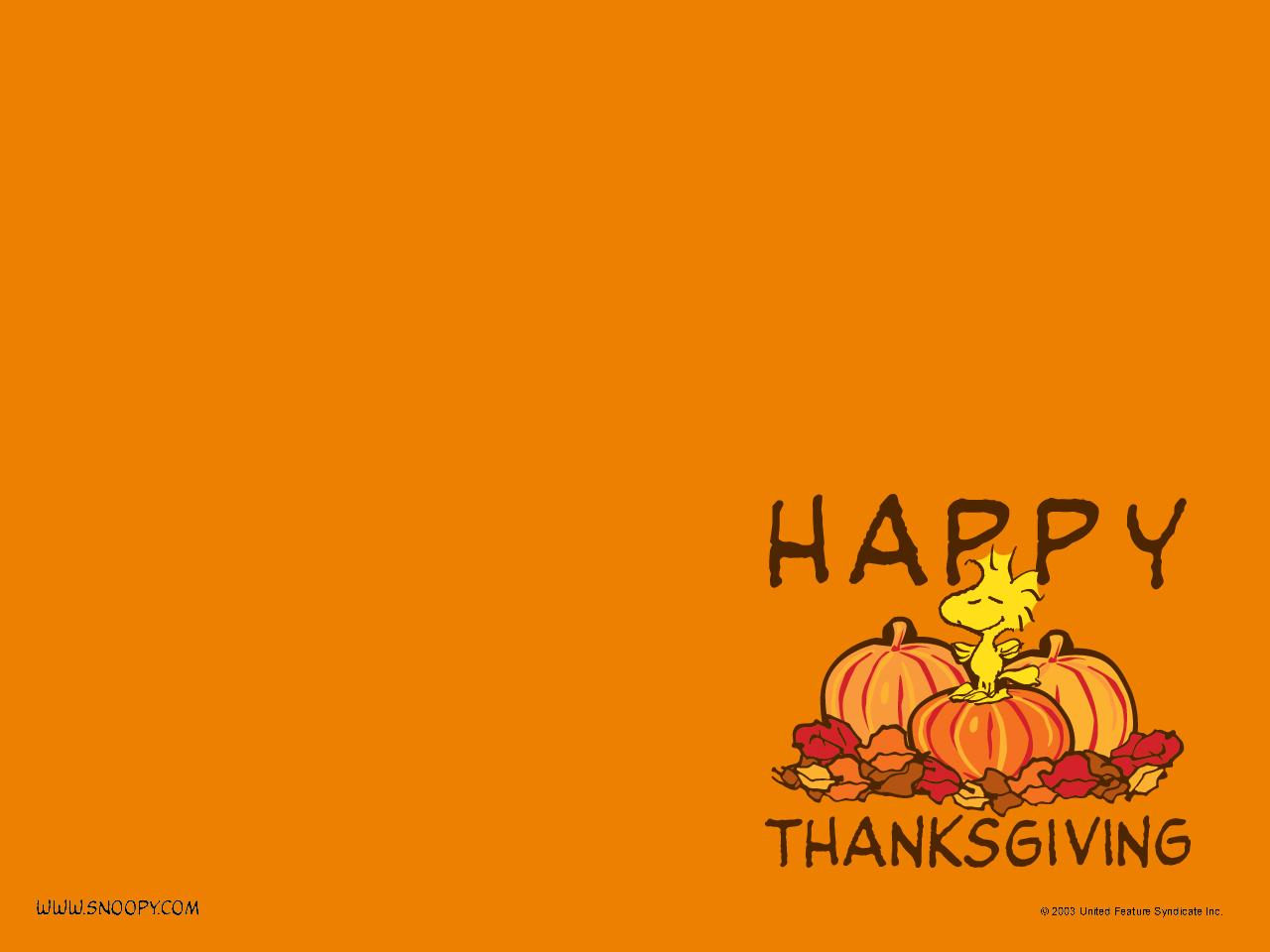 Snoopy Thanksgiving Wallpaper Hd