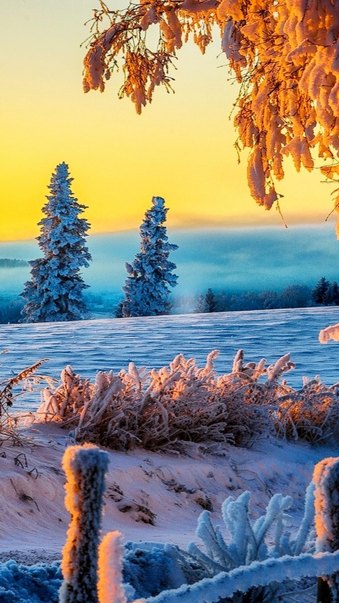 Wallpaper 4k Ultra Hd Winter Nature Wallpaper