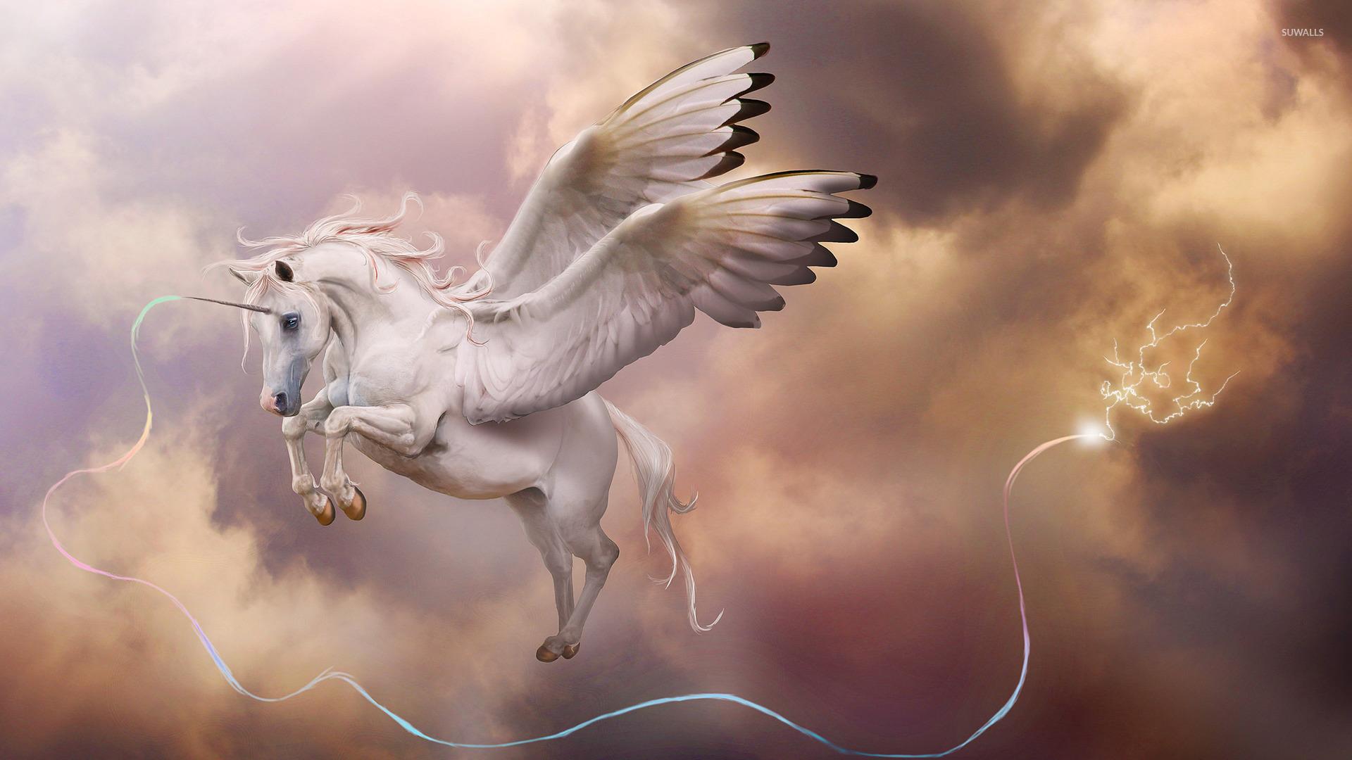 Pegasus unicorn wallpaper   Fantasy wallpapers   38388 1920x1080