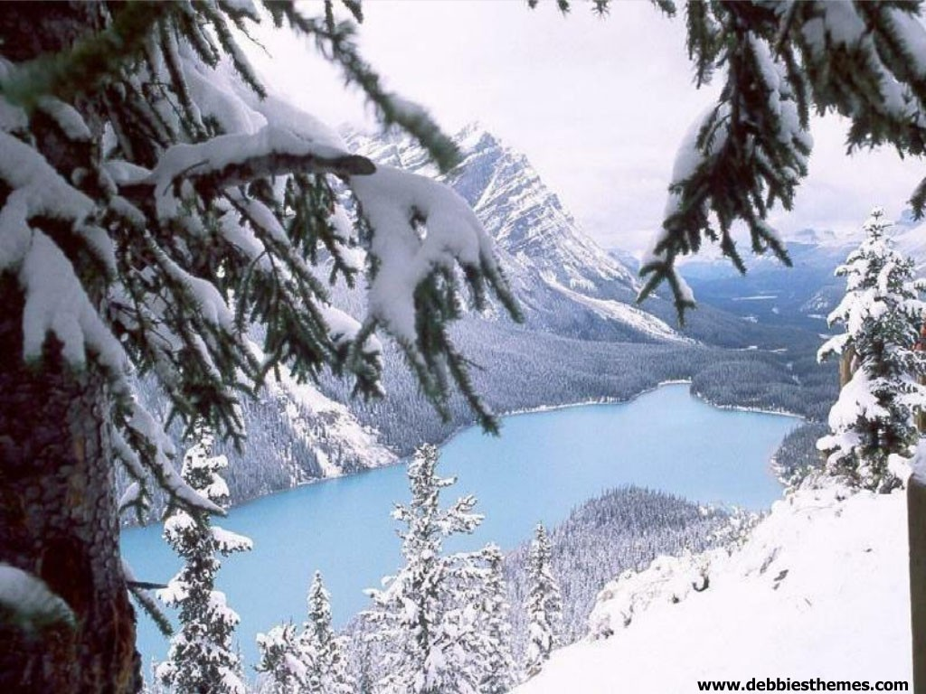 Winter Mountains Wallpaper   Christmas Photography Desktop Wallpapers 1024x768