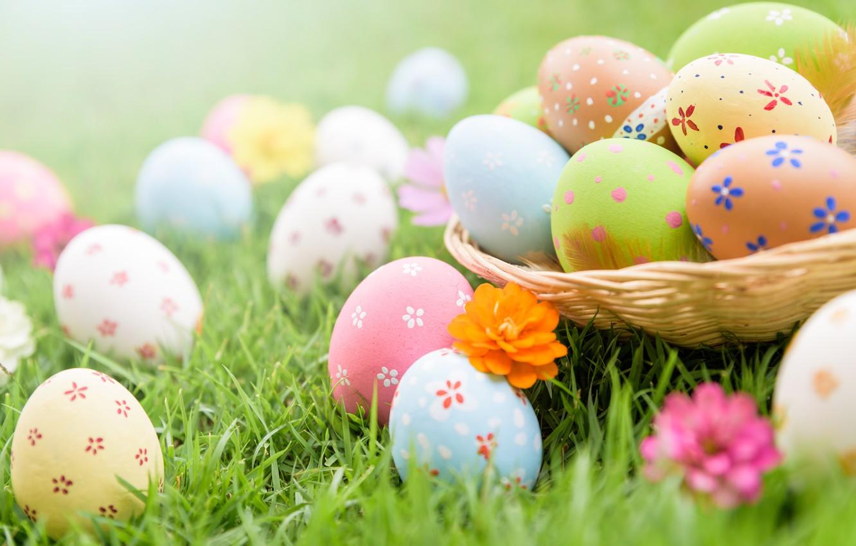 Wallpaper grass flowers eggs Easter spring Easter eggs 1332x850