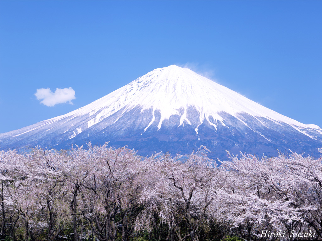 More Mount Fuji wallpapers Japan wallpapers 1024x768