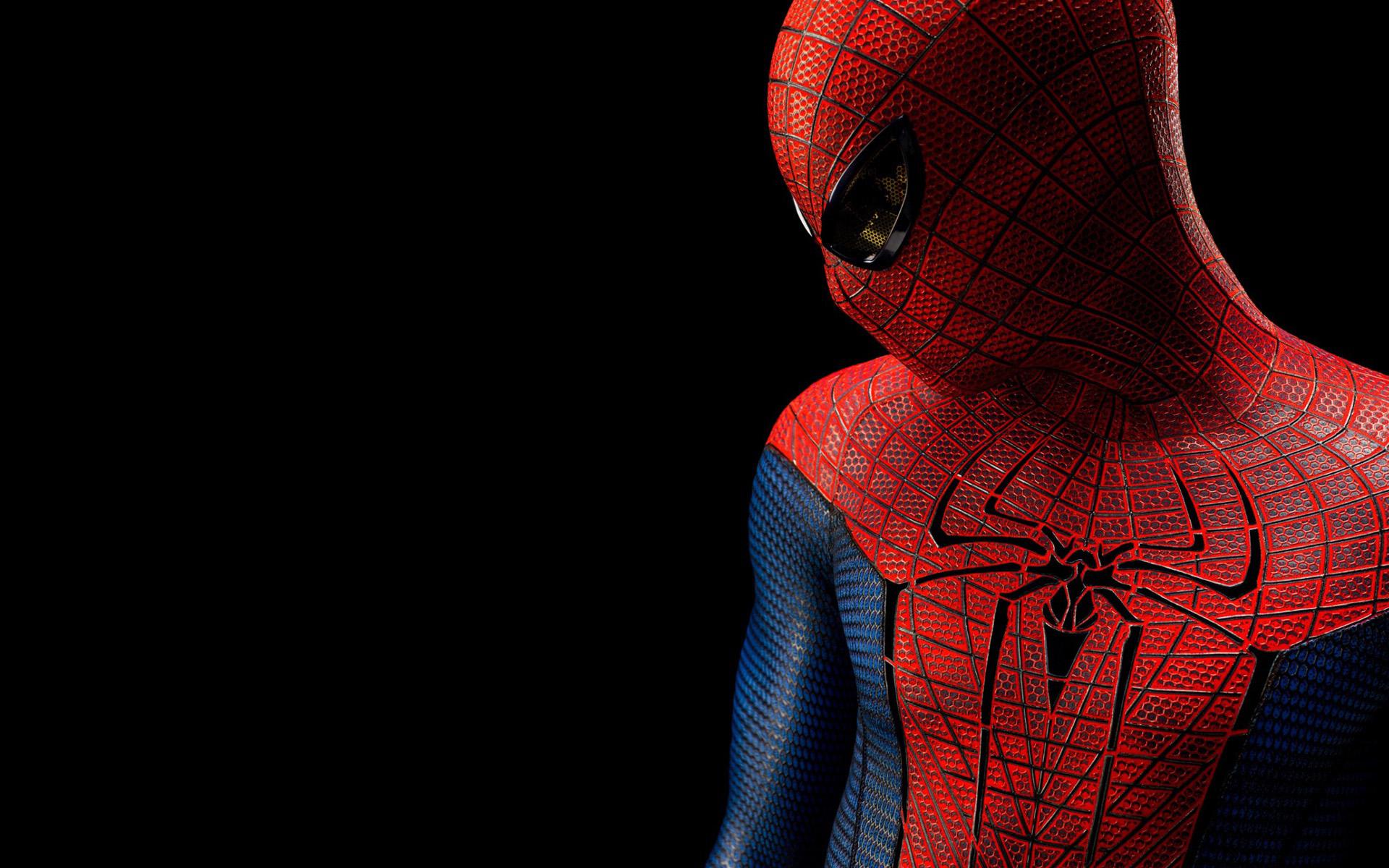The Amazing Spider Man 2012 Wallpaper HDThe Amazing Spider Man 2012  1920x1200