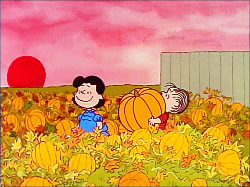 Great Pumpkin Charlie Brown Wallpapers 1024x768