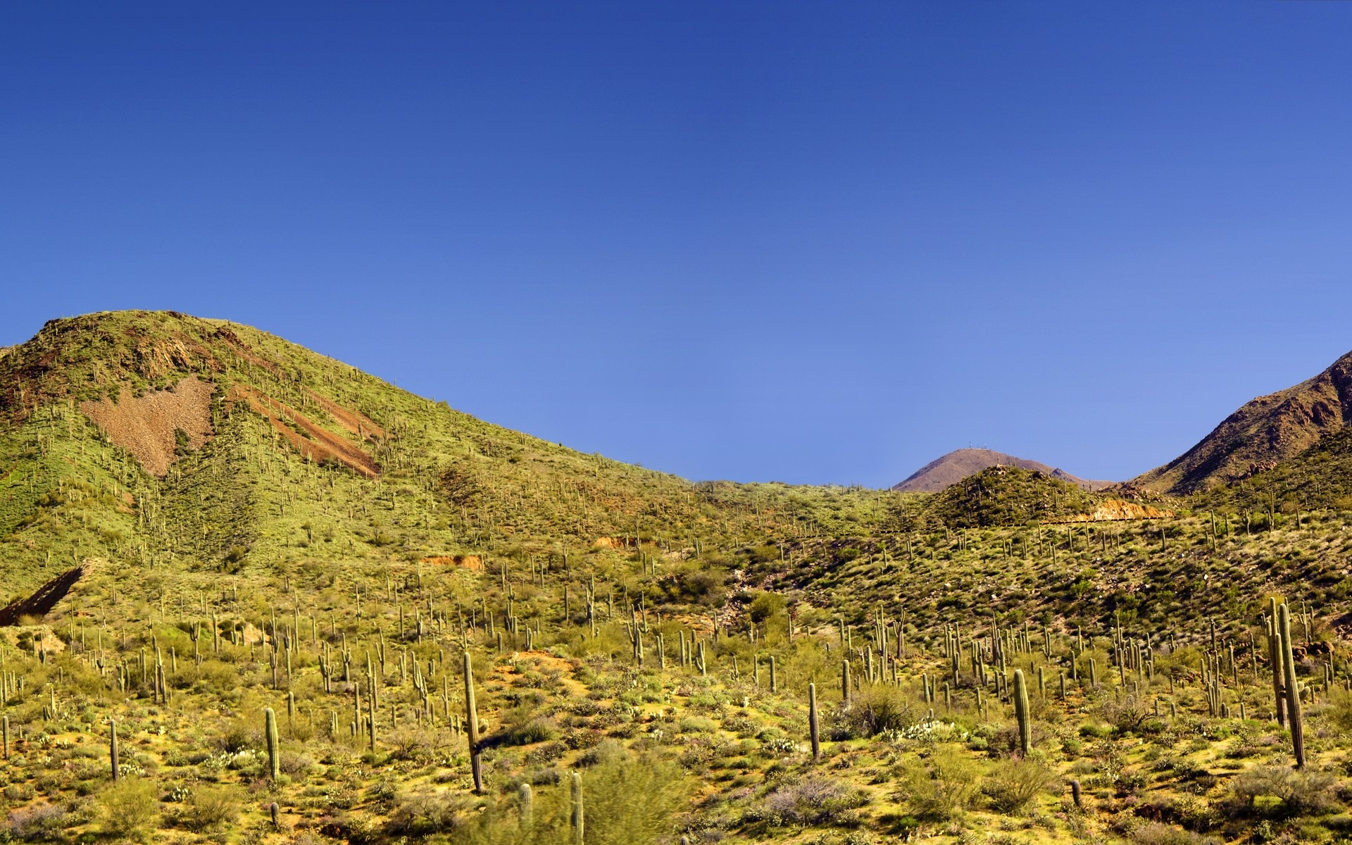 on the hills in the desert HD Desktop Wallpaper HD Desktop Wallpaper 1920x1200