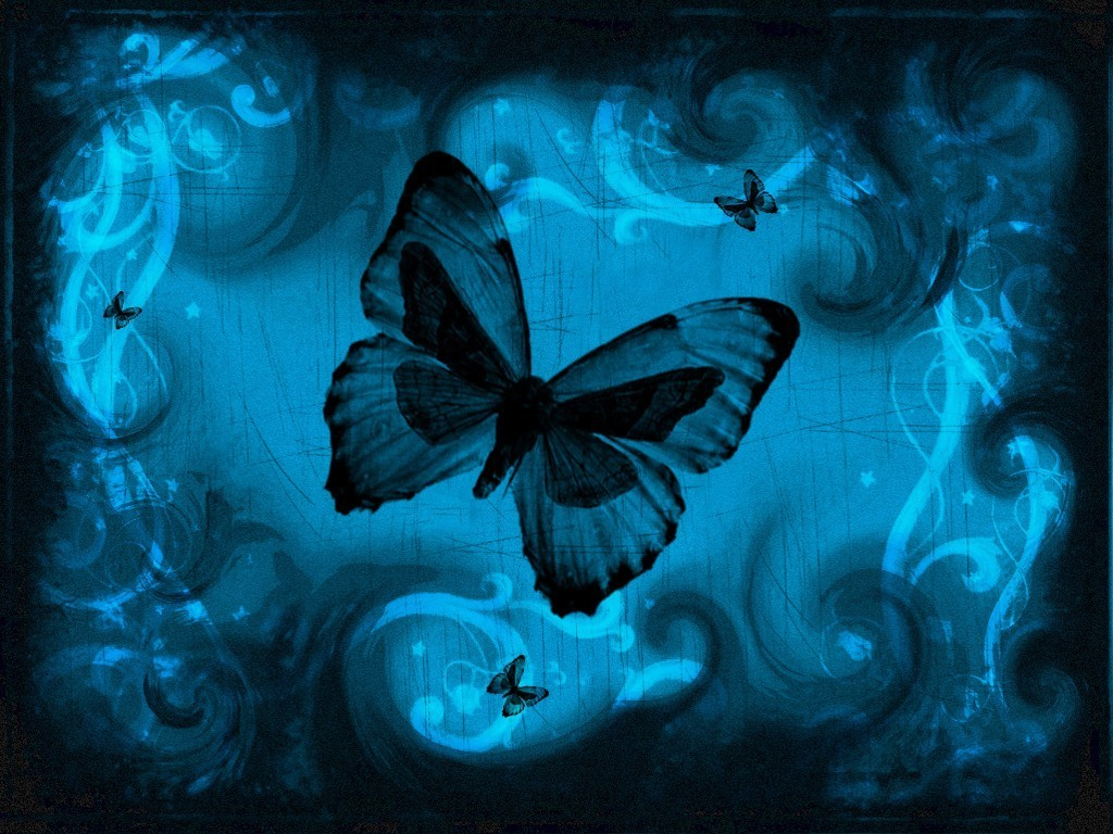 Cool Butterfly Wallpapers 1024x768