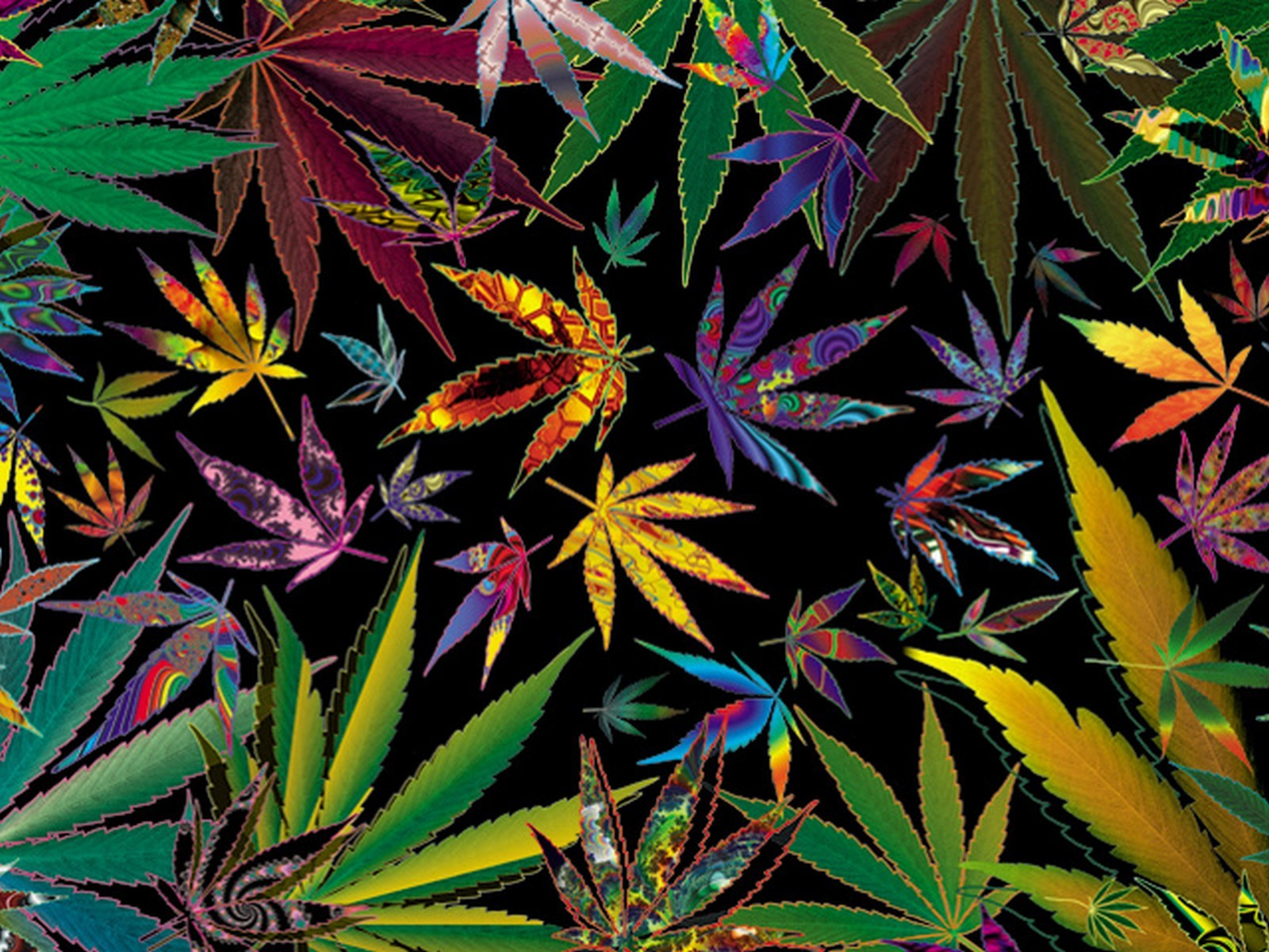 trippy stoner types Trippy Multi Pot Leaves for your weed wallpaper 1600x1200