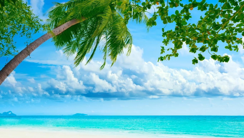 Free Download Hd Paesaggio Tropicale Wallpaper Pc Pc