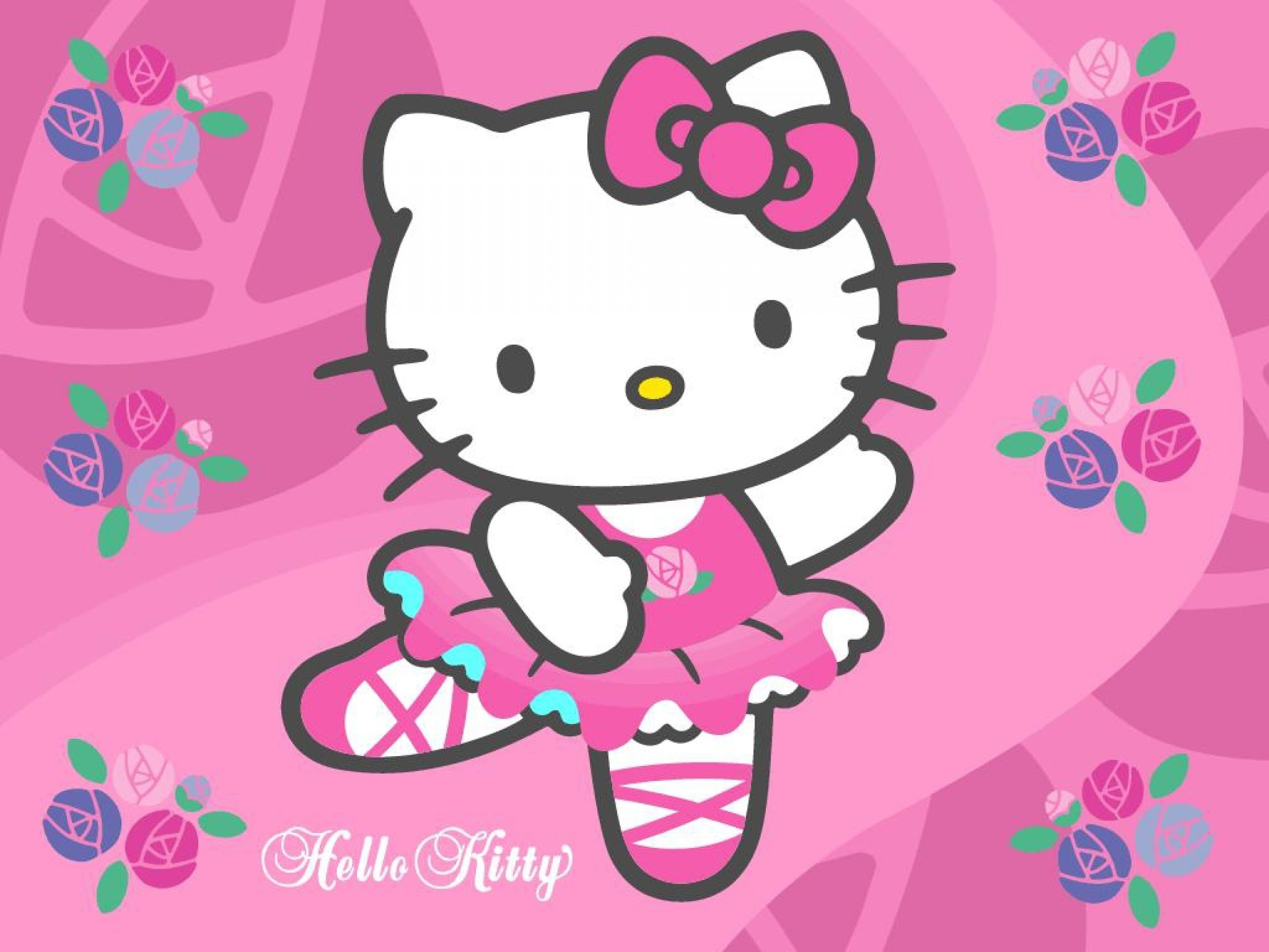 Hello Kitty Zebra Wallpaper   Cat Hello Kitty 6224   HD 2560x1920