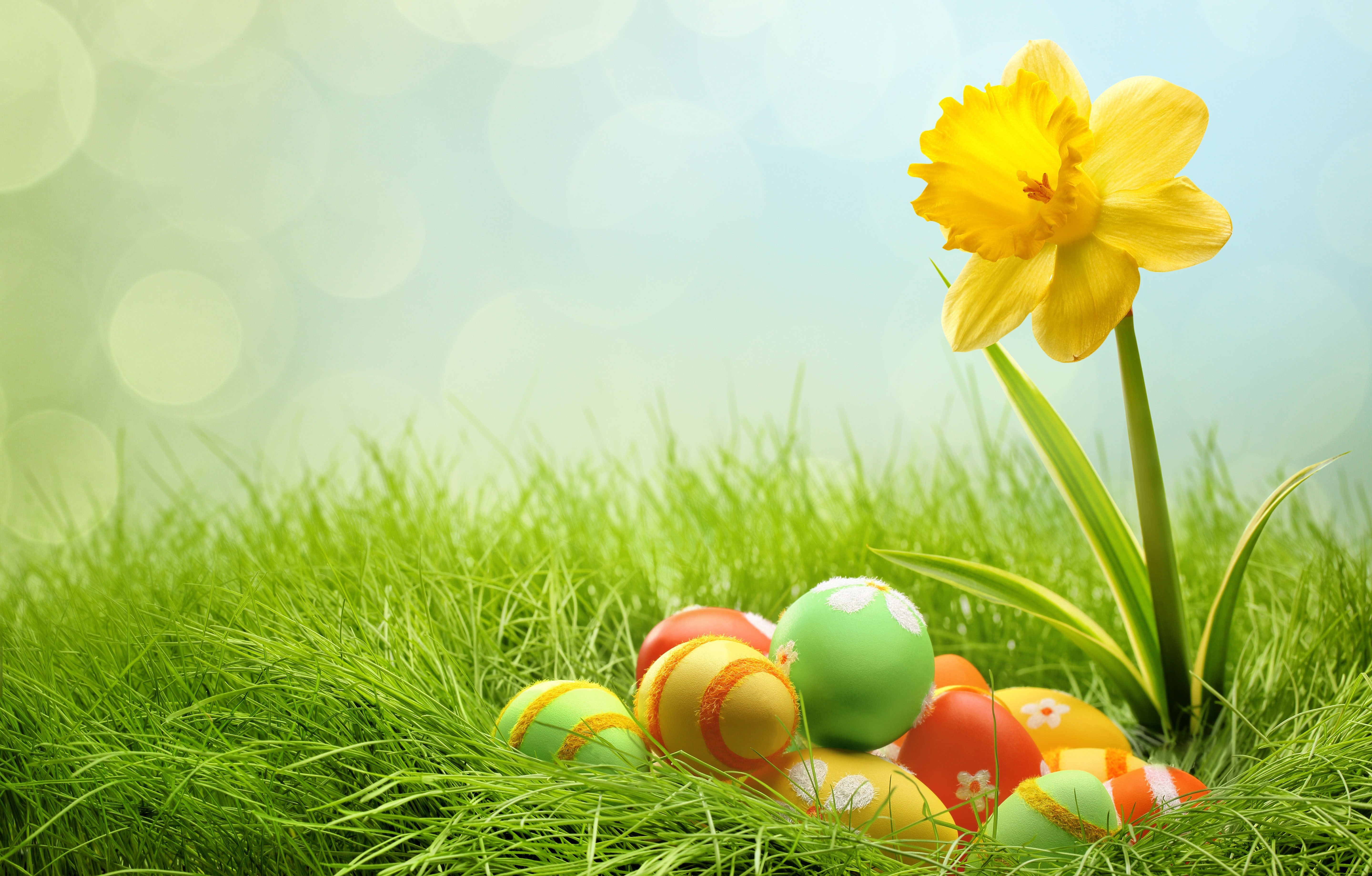 Easter Wallpaper Backgrounds Related Keywords 5760x3679