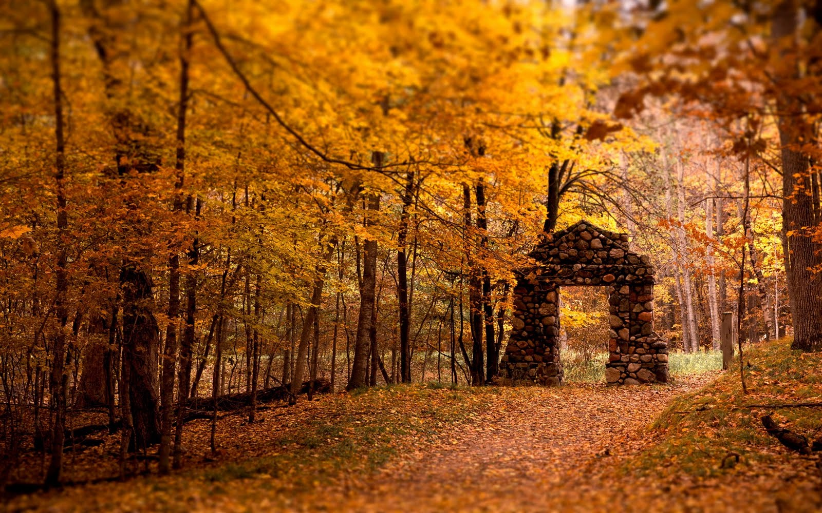 Gate Red Forest Autumn Fall HD Wallpapers Epic Desktop Backgrounds 1600x1000