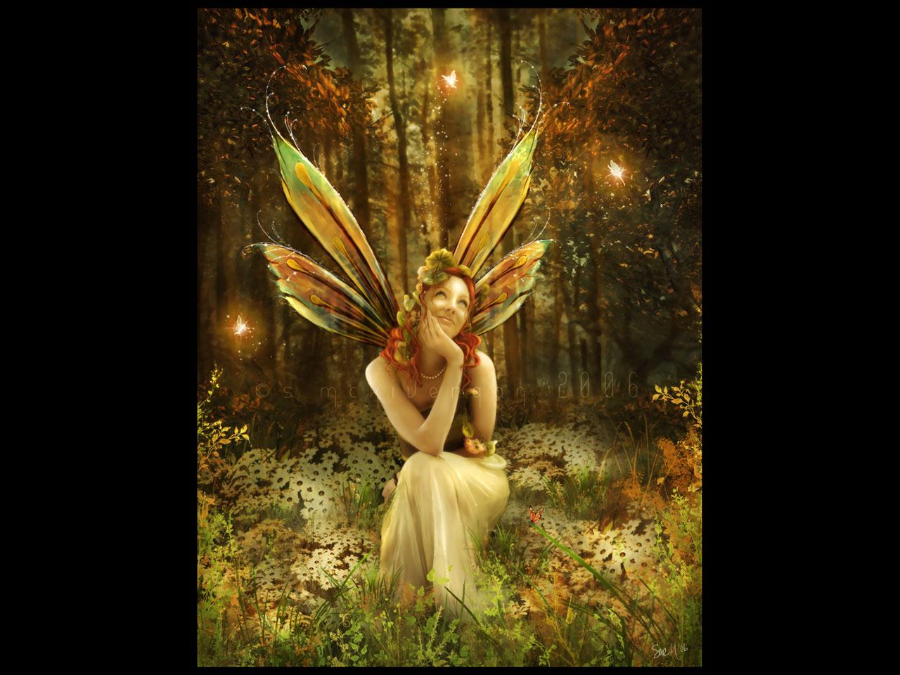 Fairies screensavers and wallpapers wallpapersafari - Free fairy wallpaper and screensavers ...