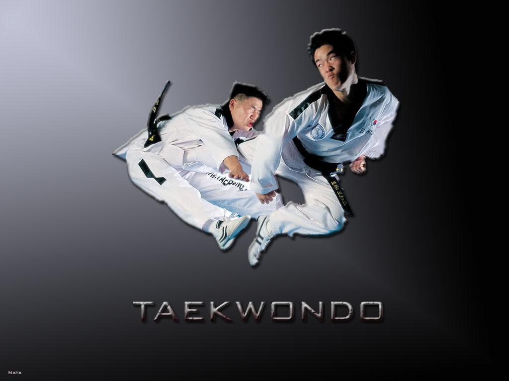 Hd Wallpapers Taekwondo Any Tkd Or Mial S Out There Hd Wallpaper 1024x768