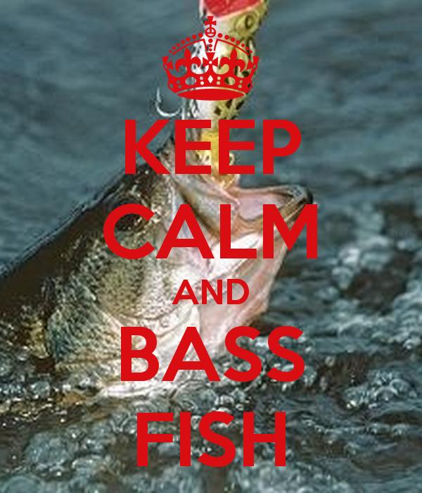 Bass Fishing Wallpaper Iphone Bass Fishing Wallpaper 600x700