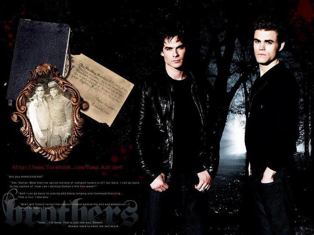 Stefan Damon   The Vampire Diaries Wallpaper 31215142 1024x768