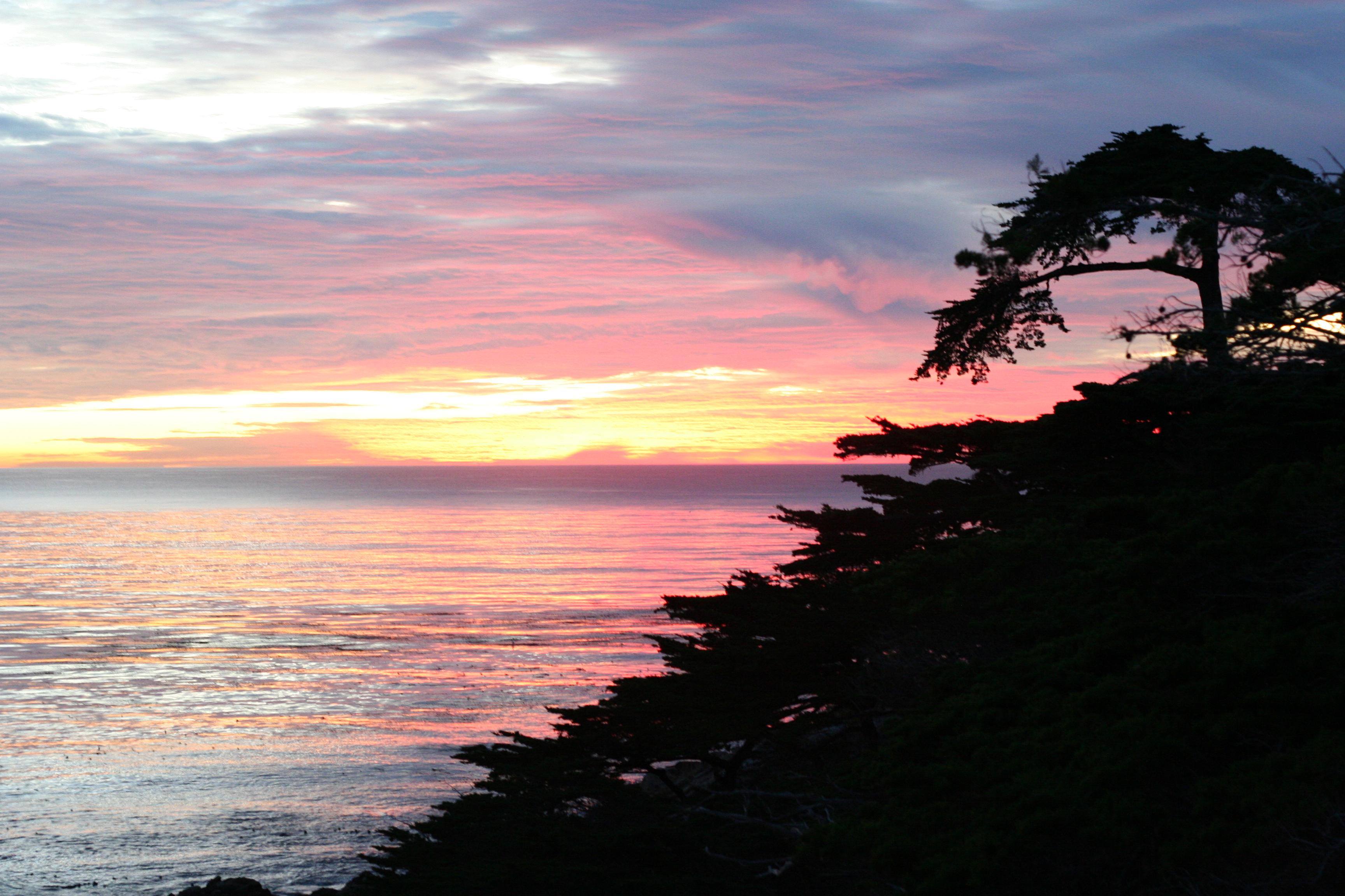 Northern california coast   Ecosia 3456x2304