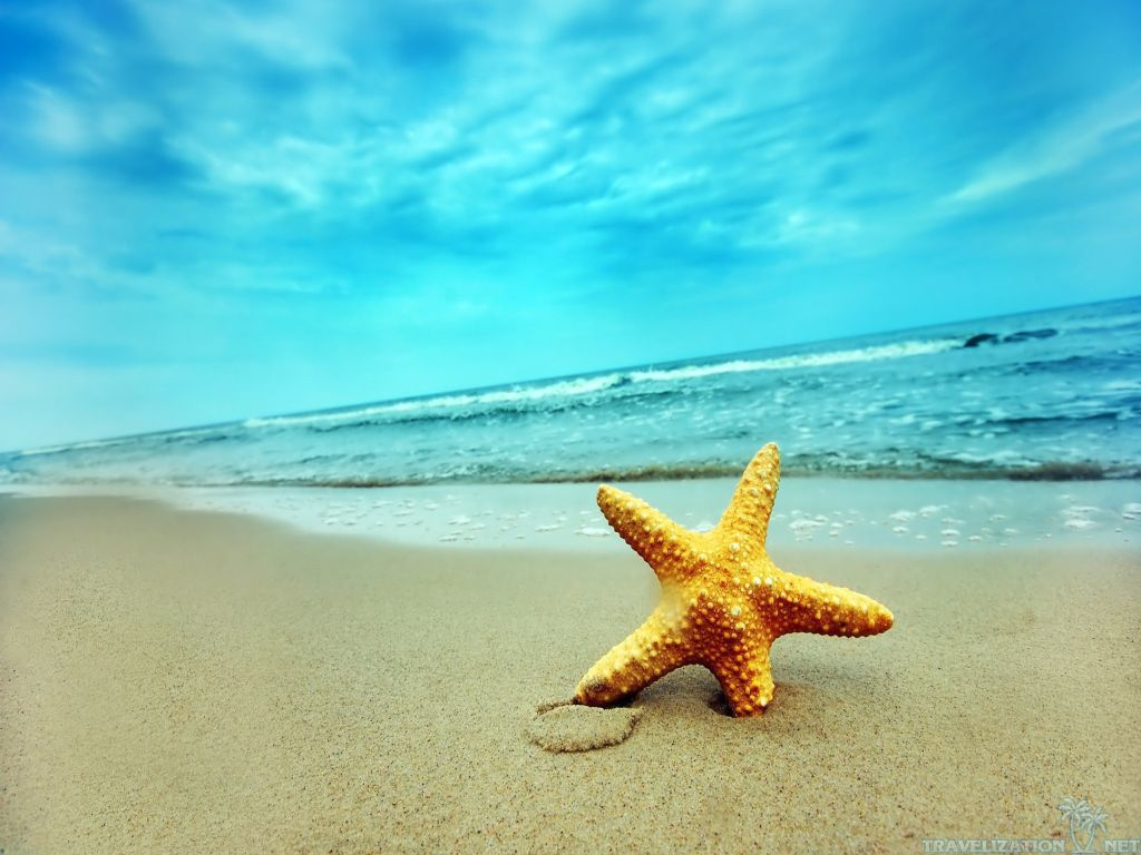 Star Summer Nature Wallpapers 1024x768 pixel Nature HD Wallpaper 1024x768