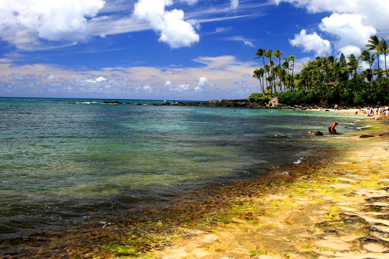 Hawaiian Islands   Hawaii Wallpaper   Tour Images Tourism Place 1600x1067