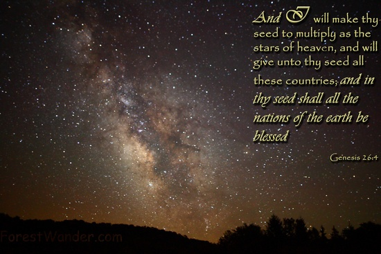 Christian Wallpaper   KJV Scripture and Nature Photography by 550x367