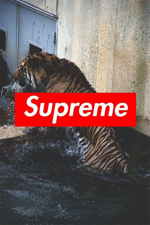 Supreme Wallpaper Hd Iphone 6 Plus Babangrichie Org