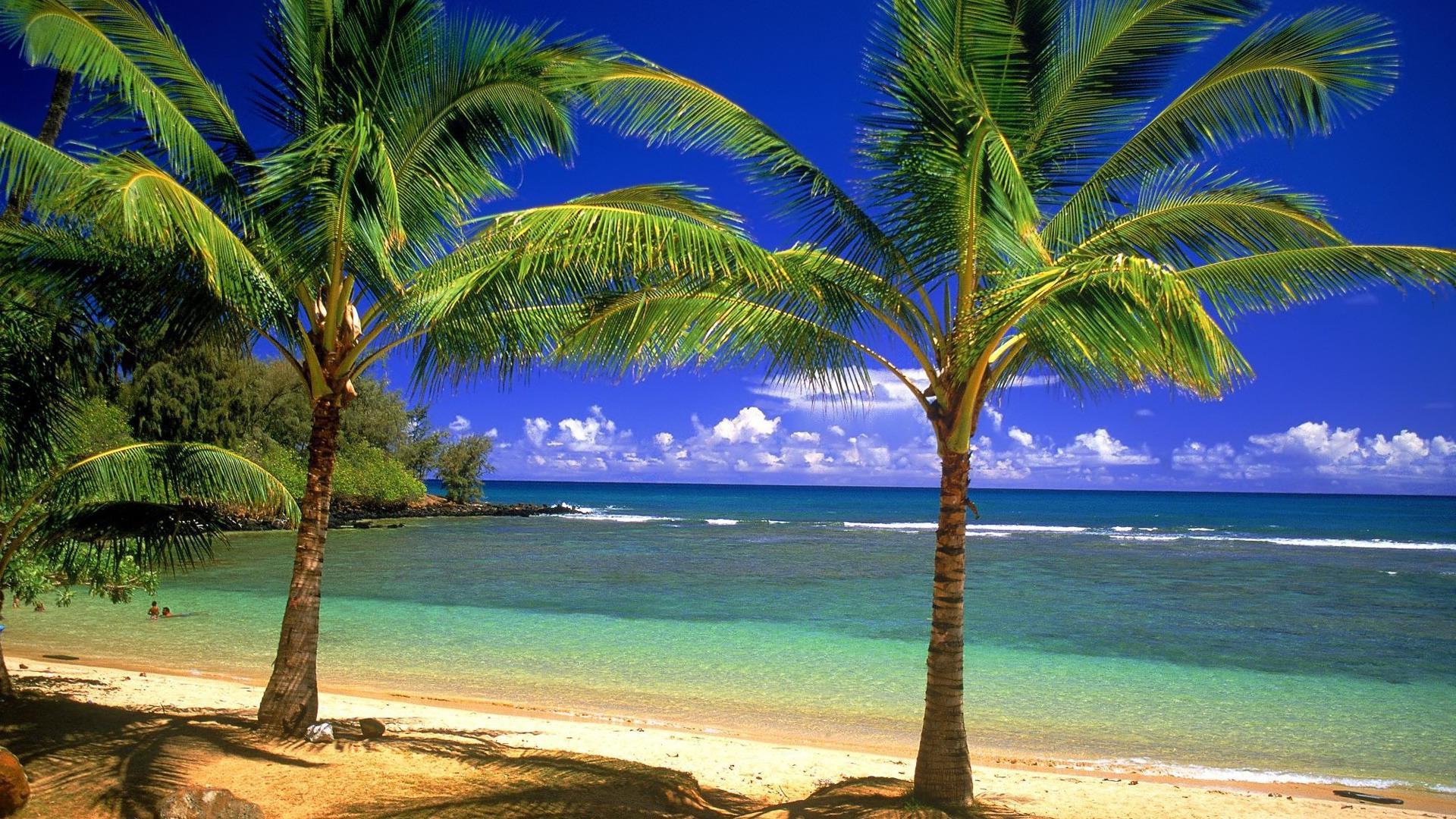hd beach desktop backgrounds wallpapersafari