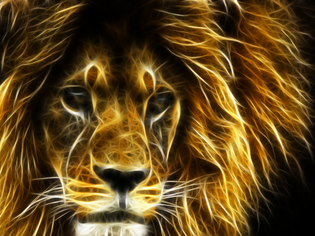 3d wallpaper desktop backgrounds lion - wallpapersafari
