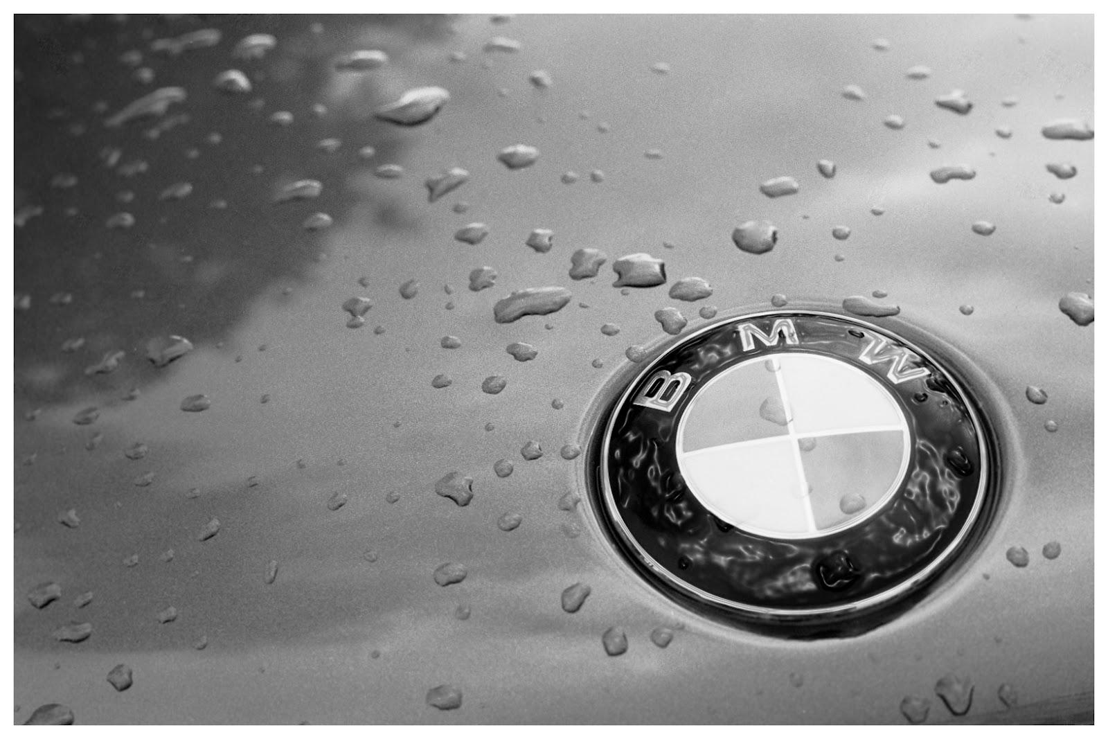 bmw car logo wallpaper hd white bmw car wallpaper hd bmw car 1600x1067