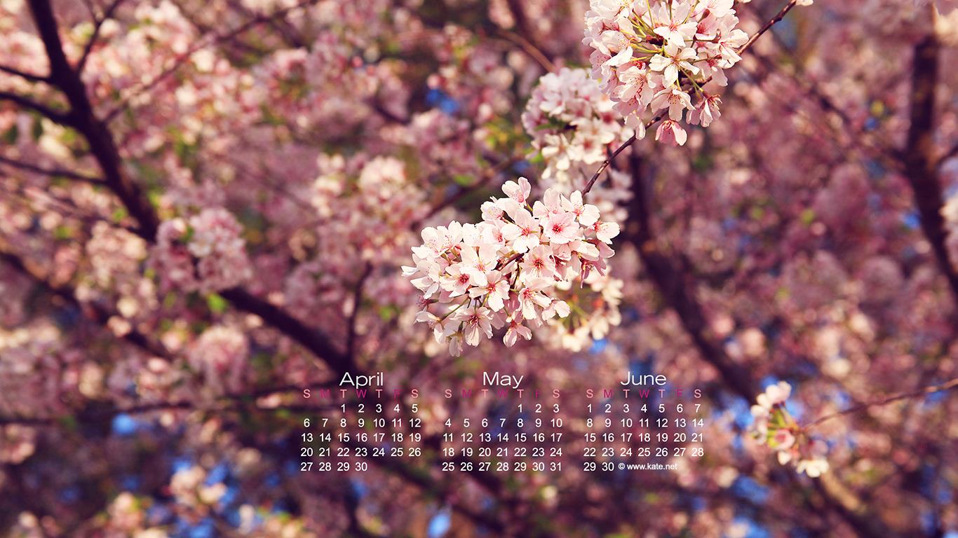 Kate Calendar Wallpaper : Kate net free calendar wallpapers wallpapersafari
